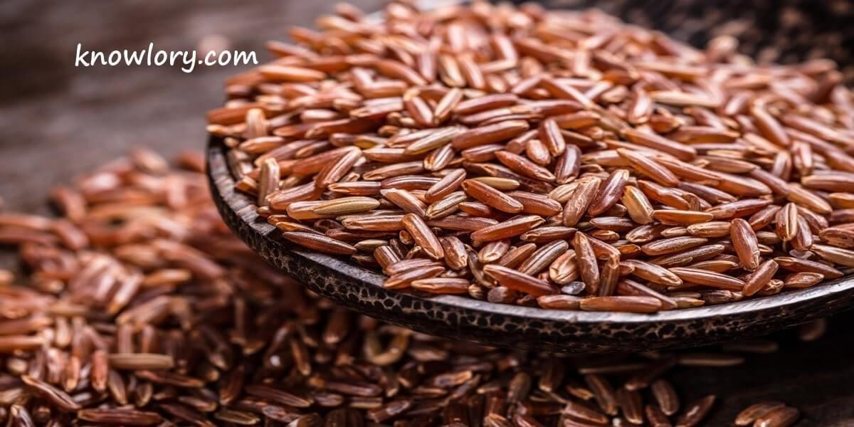 Navara-Rice-Image